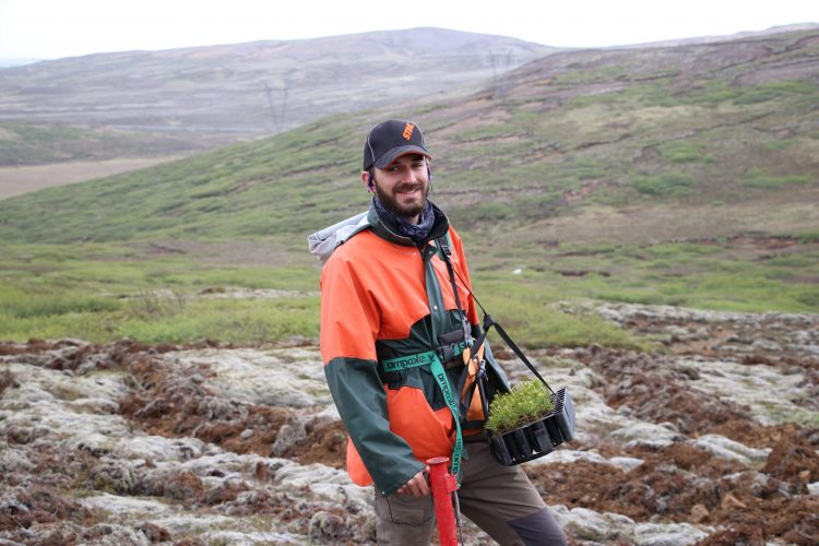 Working to plant trees in Iceland