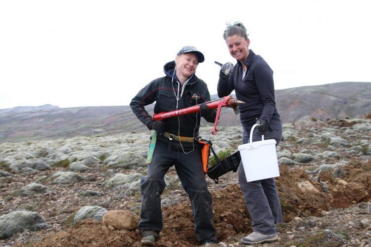 Volunteers at work planting trees