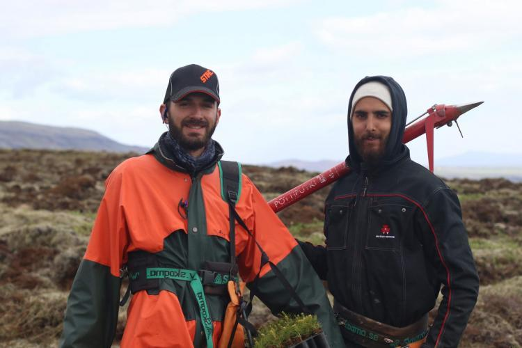 Volunteers with tools reforesting the landscape in Iceland