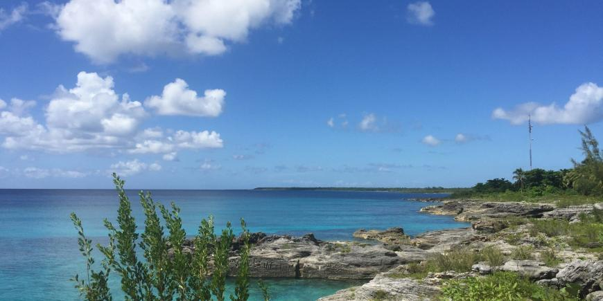 Coastline Isle of youth