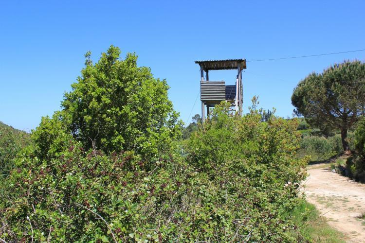 Wolf observation post in Portugal