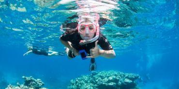 alttagCoral Reef Conservation Australia | WorkingAbroad