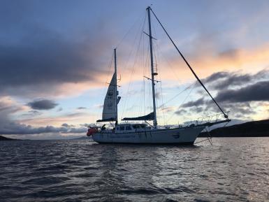 alttagHebrides Cetacean conservation | WorkingAbroad