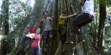Take action for rainforests