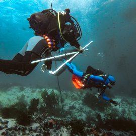 scuba data collection